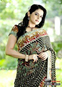 Hot Malayalam actress Roma showing naval saree stills and more wallpapers