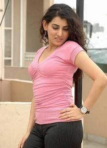 Malayalam Cute Actress Archana Gorgeous Saree Pics unseen pics