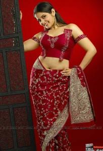 Hot Malayalam actress Roma showing naval saree stills and more hot photos