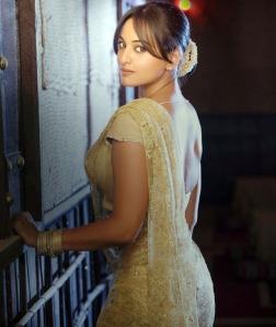Sonakshi Sinha Dabangg Girl Stills Gallery gallery pictures